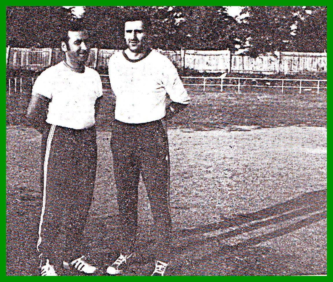 Profesor i trener